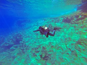 scuba-diver-1049945 1920